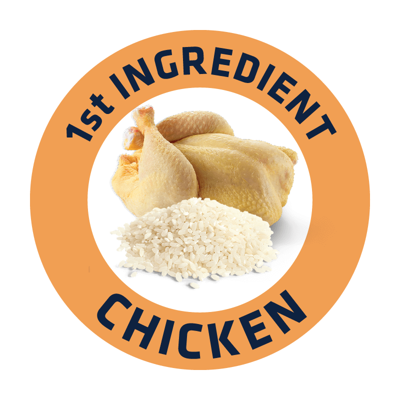 CHICKEN & RICE@2x.png