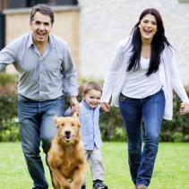 Prêt pour adopter un animal de compagnie?