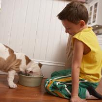 Pourquoi adopte-t-on un chien?